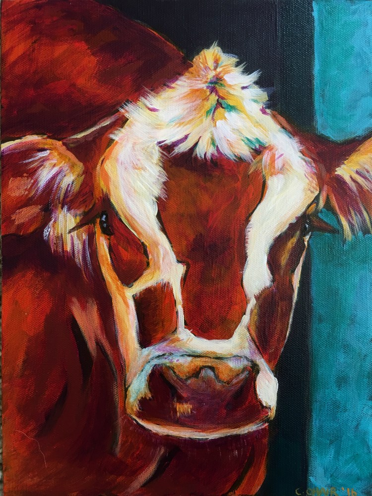 """Cow 2 - SOLD"" original fine art by Colleen OHair"