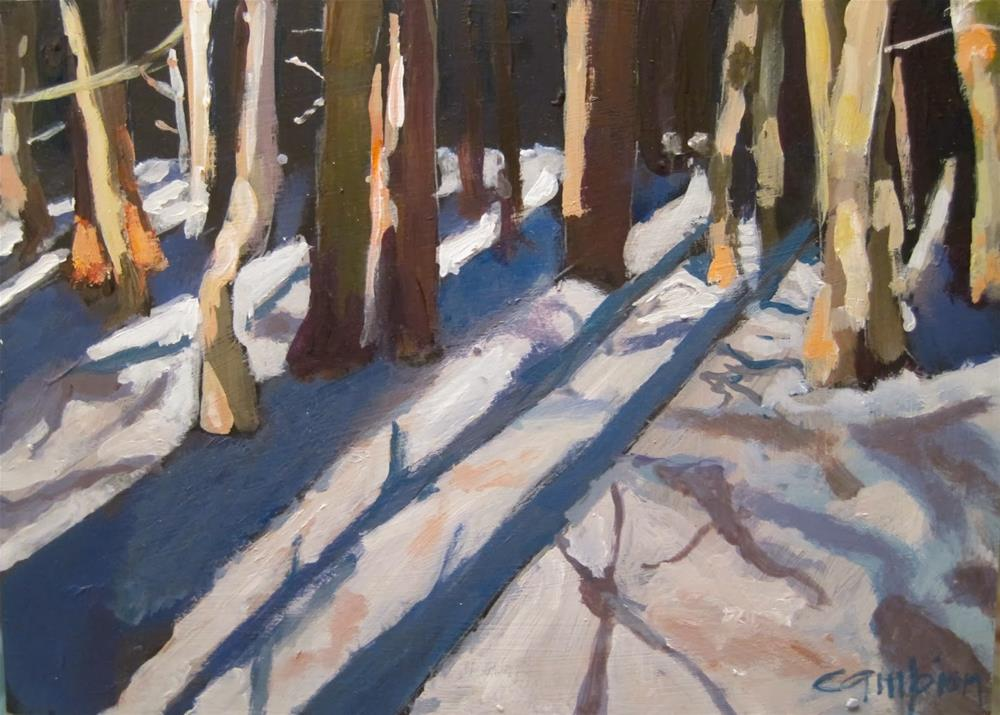 """281.  Shadows in the Forest"" original fine art by Diane Campion"