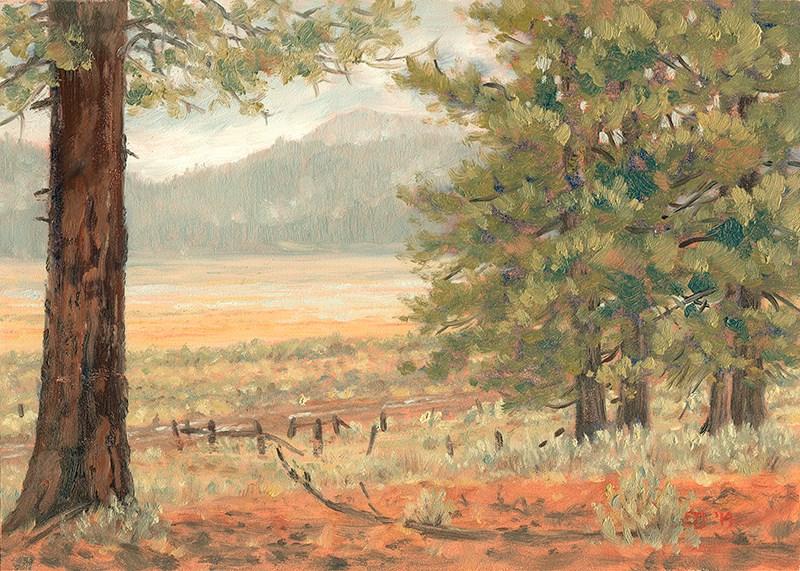 """""""C1578 December Rain over Camas Prairie (Oregon High Desert)"""" original fine art by Steven Thor Johanneson"""