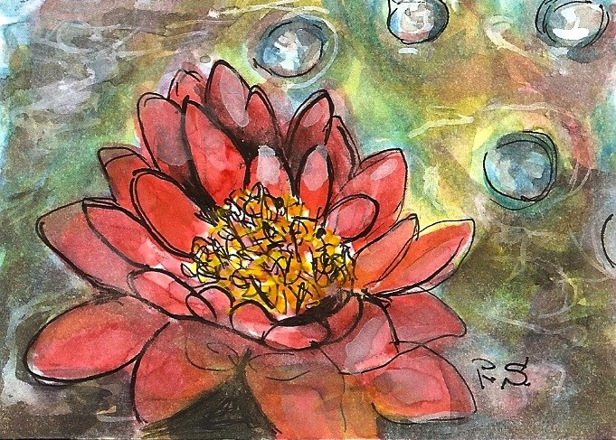 """ACEO Water Lily Coral Pond Lake Flower Painting Original SFA Penny StewArt"" original fine art by Penny Lee StewArt"