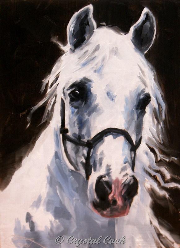 """Beauty"" original fine art by Crystal Cook"