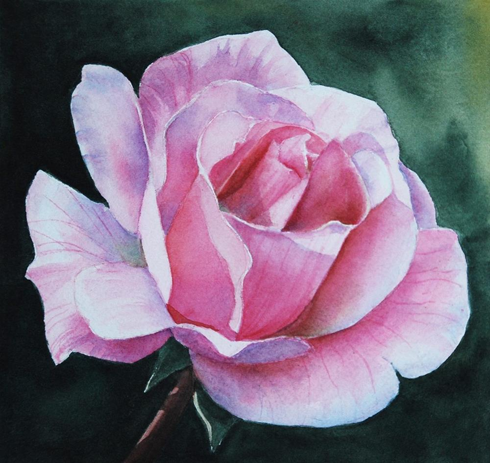 """Pink Rose"" original fine art by Mary Anderson"