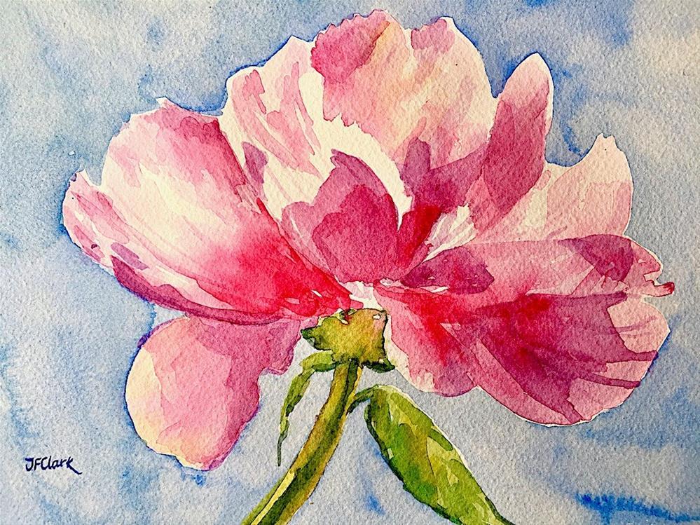 """Pink Peony, study"" original fine art by Judith Freeman Clark"