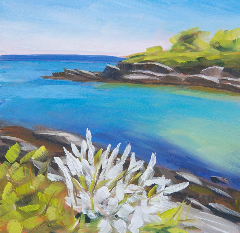 """#19 - Apple Blossoms - Fort Williams - Cape Elizabeth, ME"" original fine art by Sara Gray"