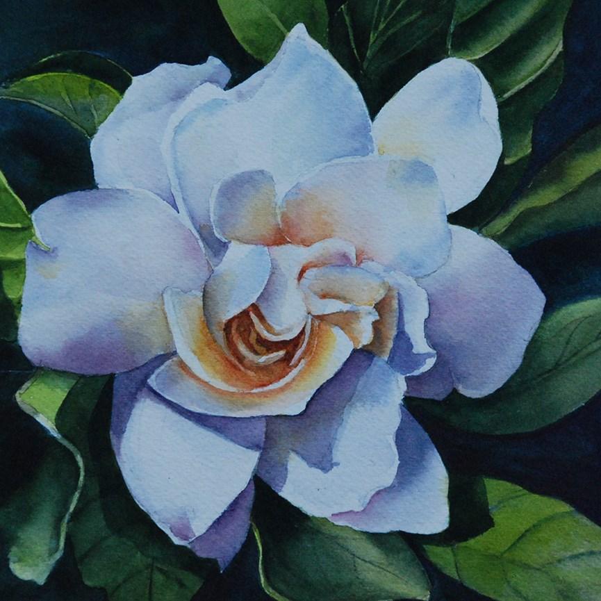 """Gardenia"" original fine art by Mary Anderson"