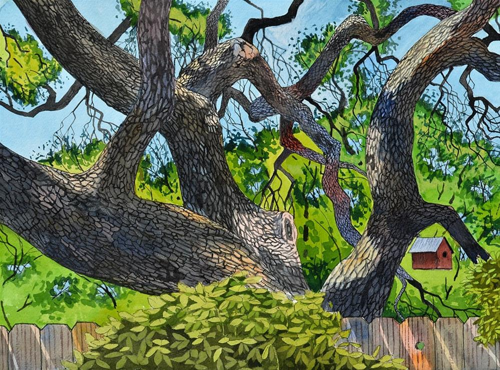 """Live Oak Backyard"" original fine art by Jeff Atnip"