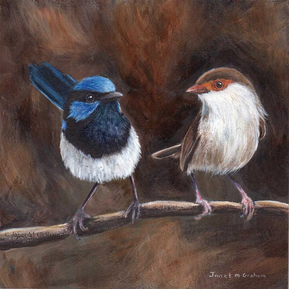 """Superb Fairy Wrens"" original fine art by Janet Graham"