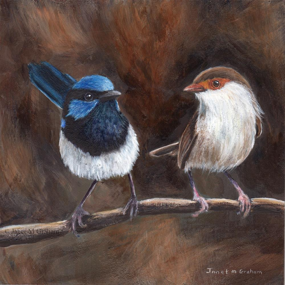 """Superb Fairy Wrens"" original fine art by Janet Graham"