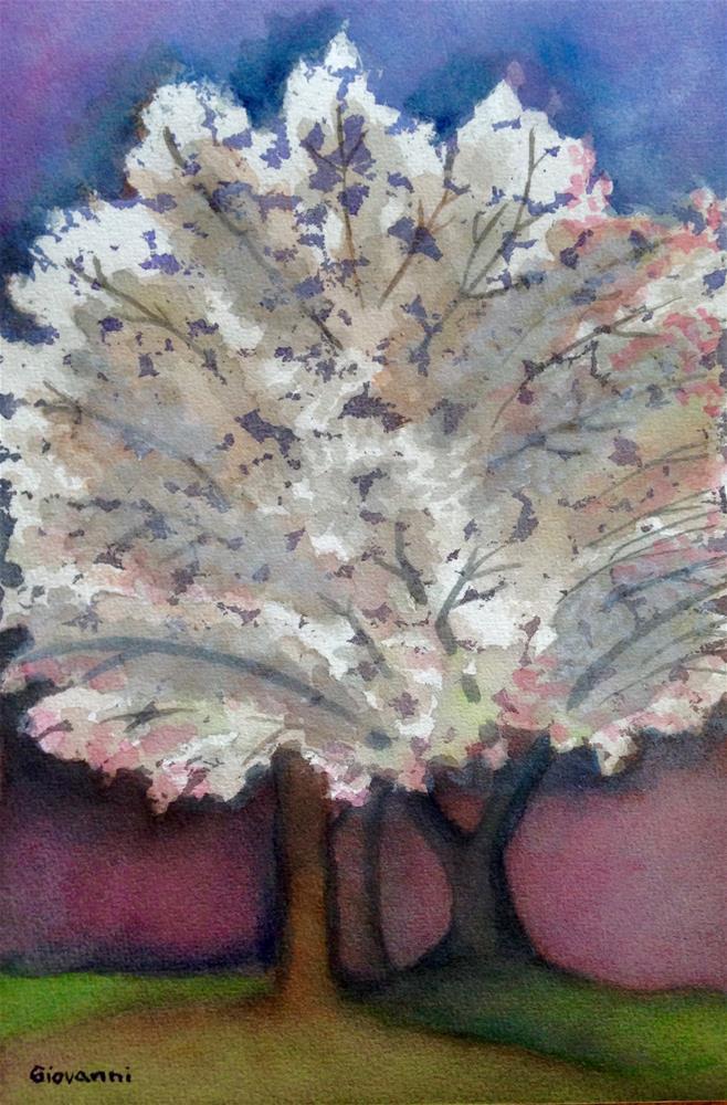 """A white cherry tree"" original fine art by Giovanni Antunez"