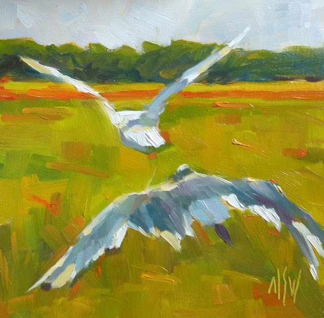 """""""Bird's Eye View 6x6 oil on board. I combined two shots of gulls to create this painting."""" original fine art by Mary Sheehan Winn"""
