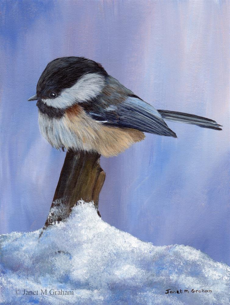 """Winter Chickadee"" original fine art by Janet Graham"