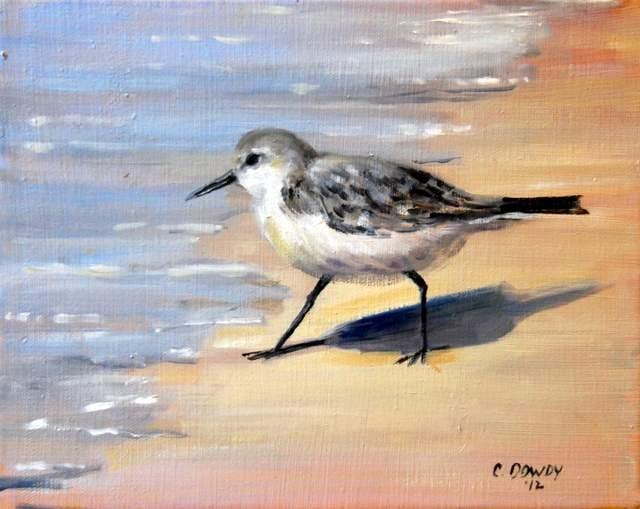 """Little Sea Bird"" original fine art by Christina Dowdy"