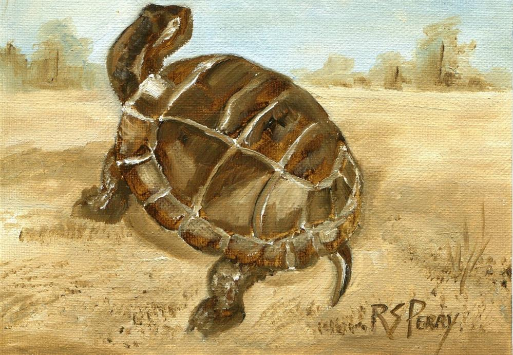 """Turtle One"" original fine art by R. S. Perry"