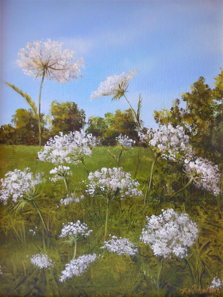 """Queen Anne's Lace"" original fine art by Terri Nicholson"