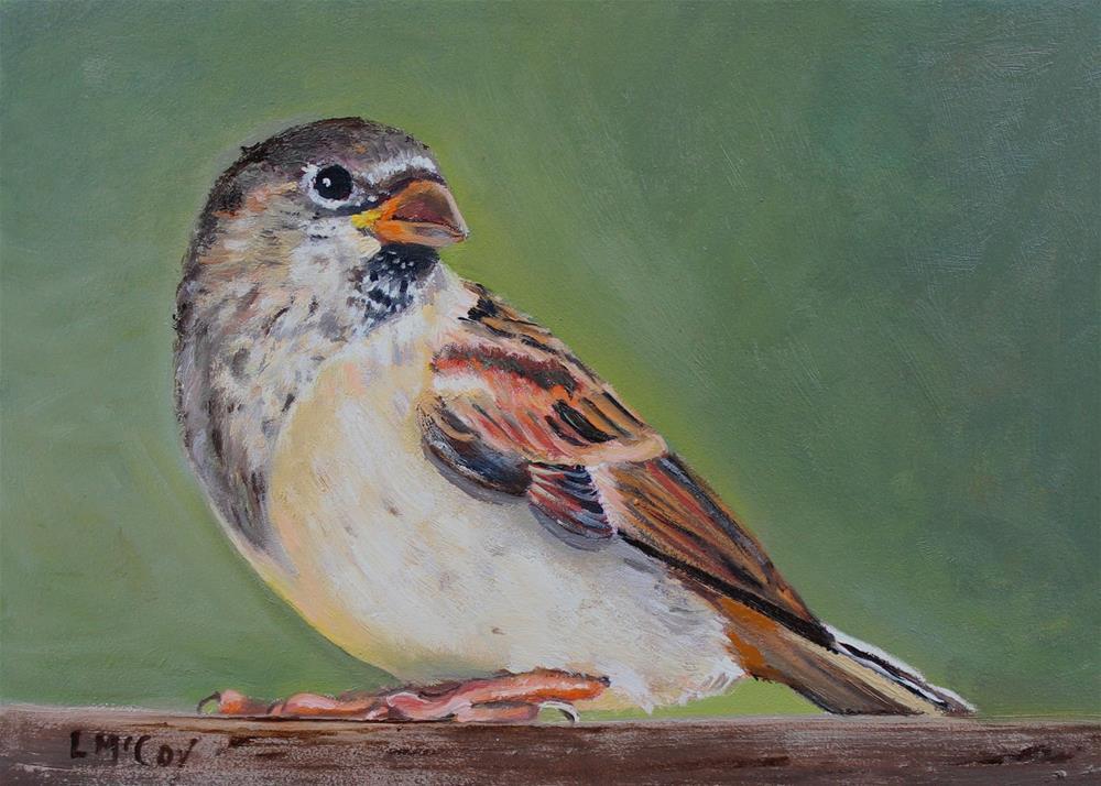 """""""Sitting Pretty, Sparrow Bird"""" original fine art by Linda McCoy"""
