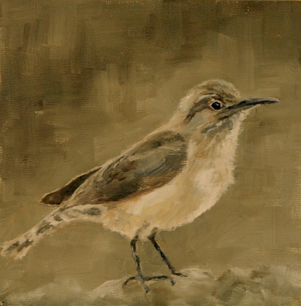 """""""Little Wren"""" original fine art by Debra Shore"""