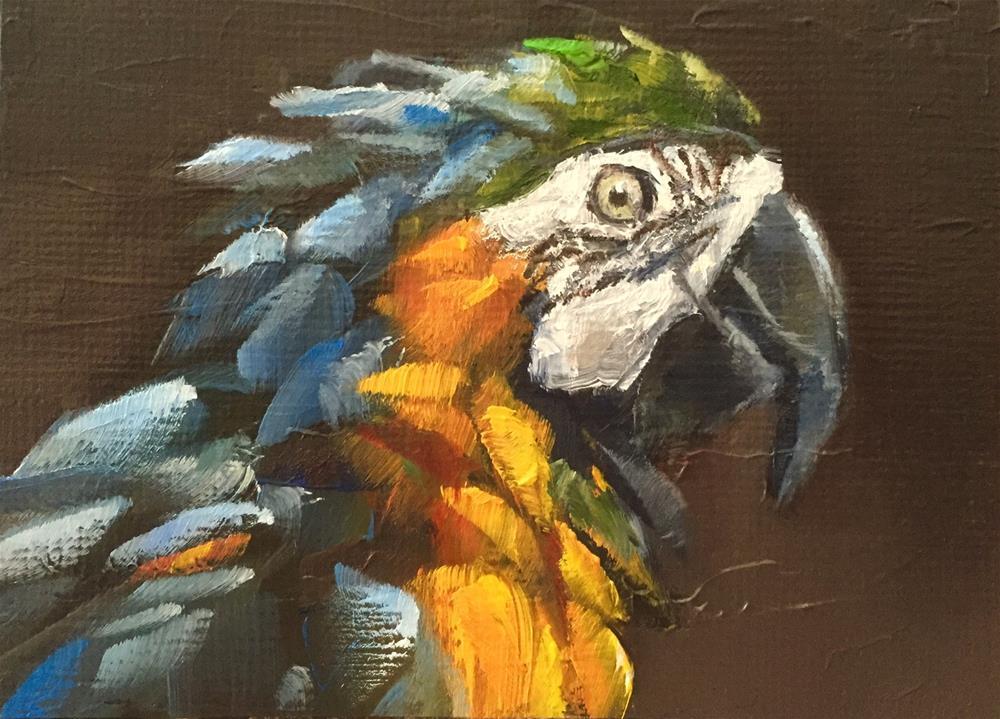 """Squawk"" original fine art by Gary Bruton"
