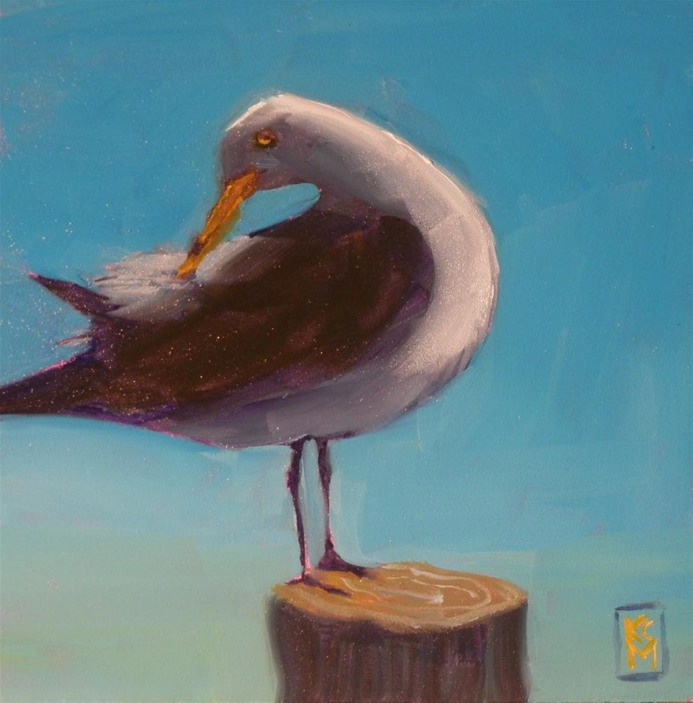 """Birthday Gull, 6x6 Inches, Oil Painting of Sea Gull"" original fine art by Kelley MacDonald"