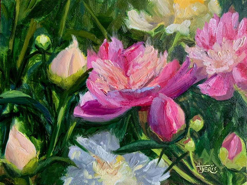 """Pink and Yellow Peonies"" original fine art by Andrea Jeris"