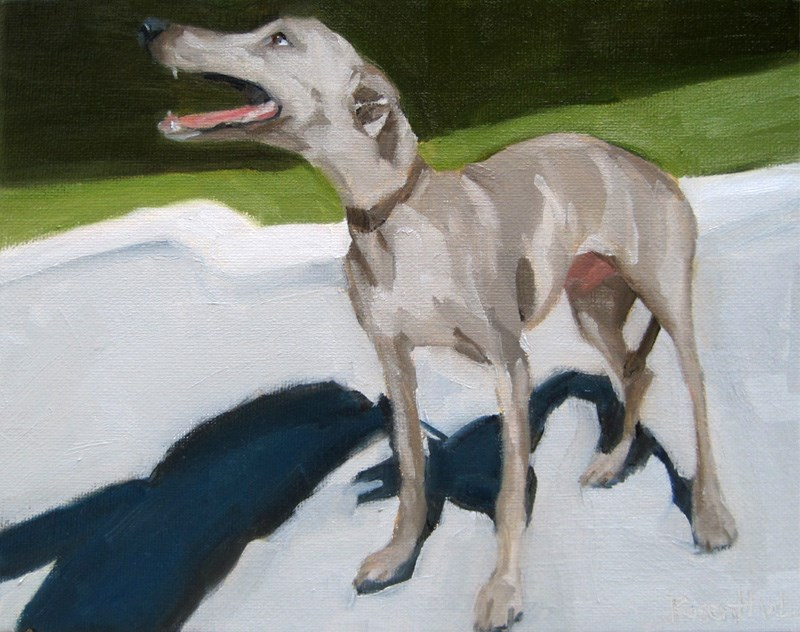 """The Greyhound"" original fine art by Robin Rosenthal"