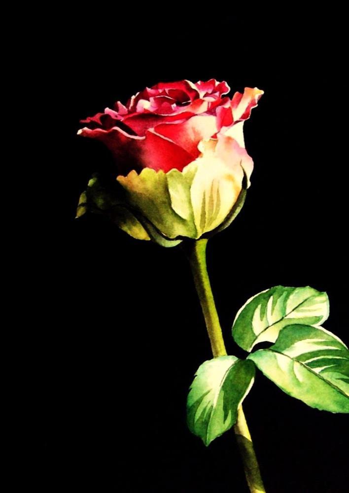 """A Forever Valentine Rose"" original fine art by Jacqueline Gnott, TWSA, WHS"