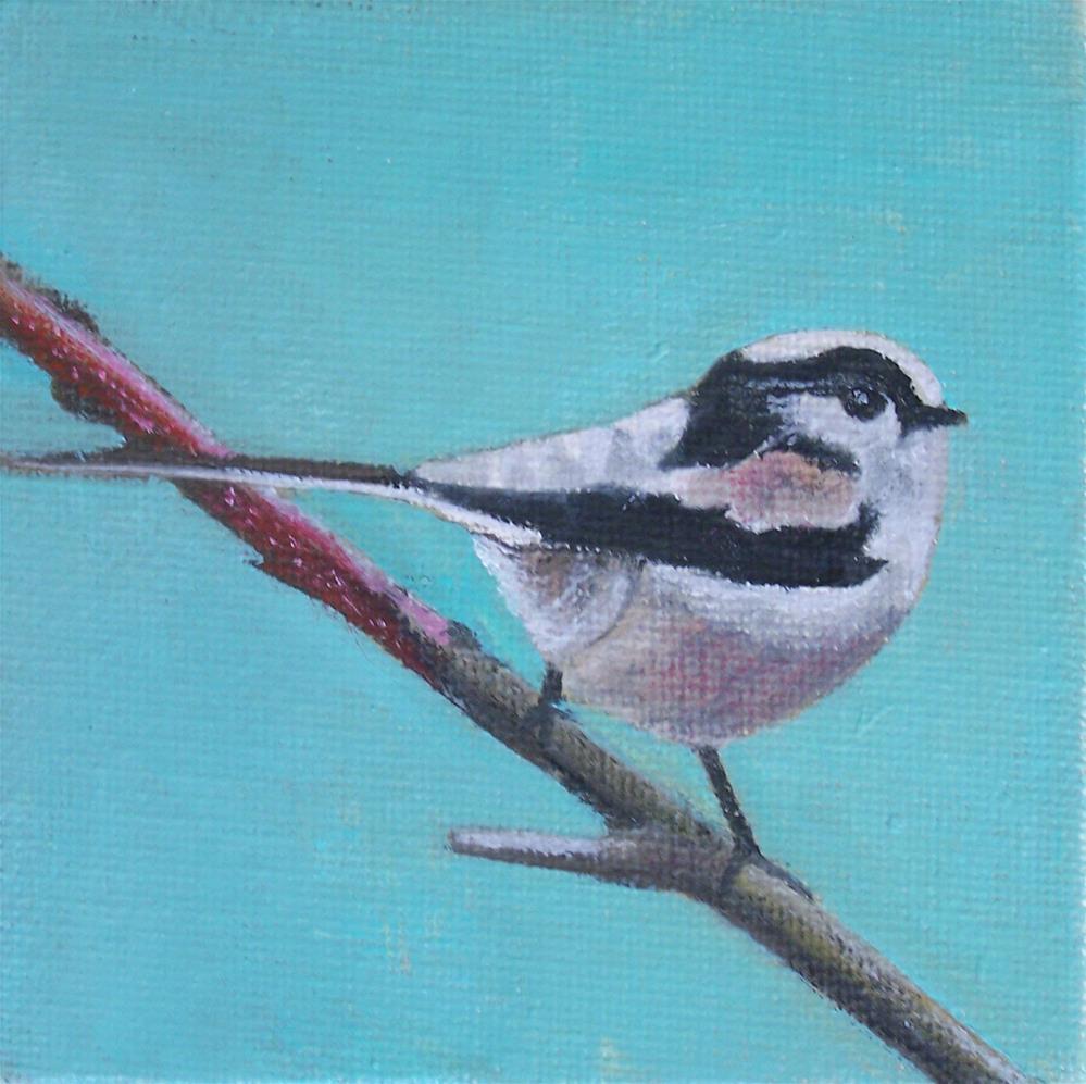 """Long tailed Titmouse"" original fine art by John Marcum"
