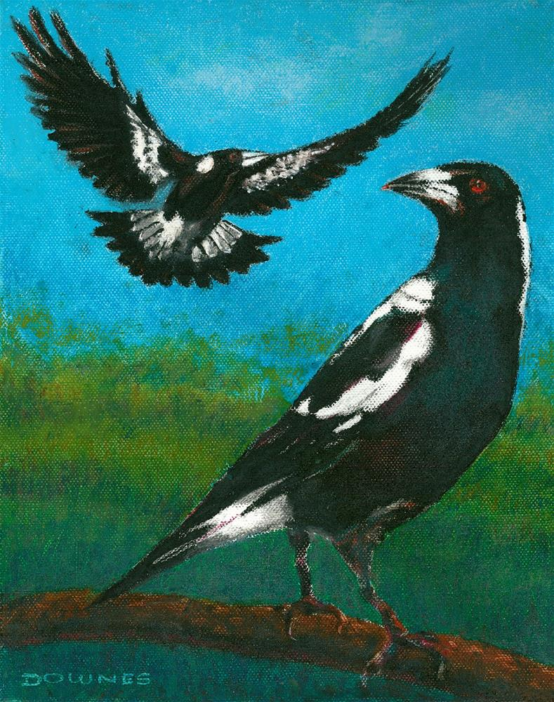 """337 AUSTRALIAN MAGPIE"" original fine art by Trevor Downes"