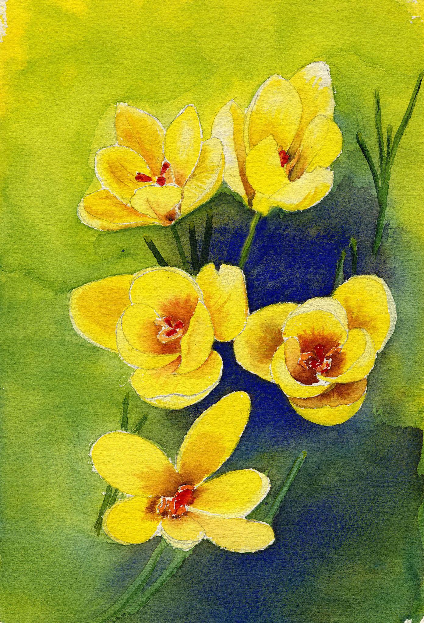 """""""Spring Crocus"""" original fine art by Michelle Wolfe"""