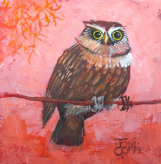 """""""Another Little Owl"""" original fine art by Toni Goffe"""