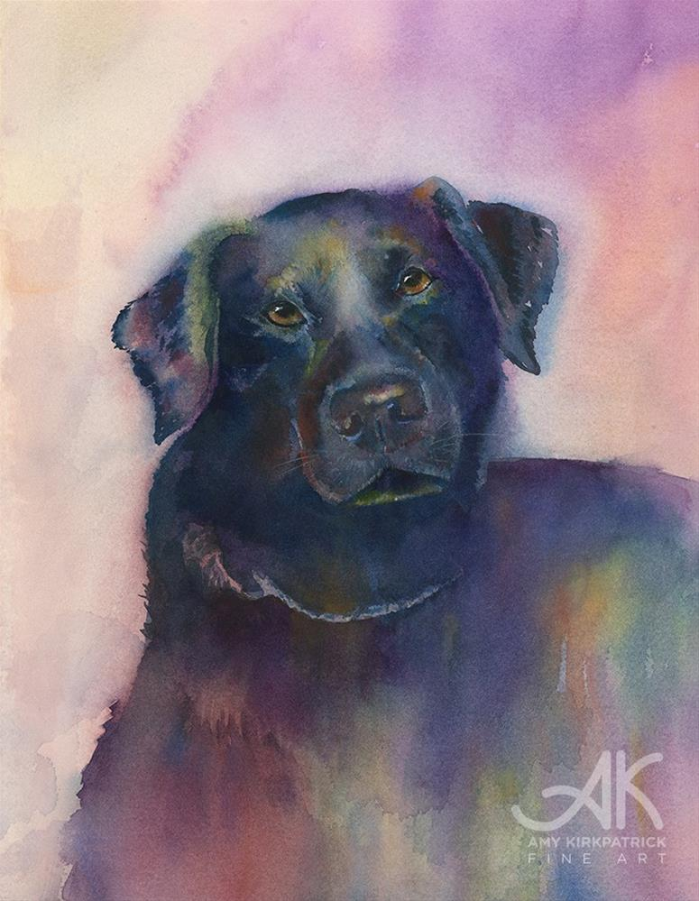 """BLACK DOG #0603"" original fine art by Amy Kirkpatrick"
