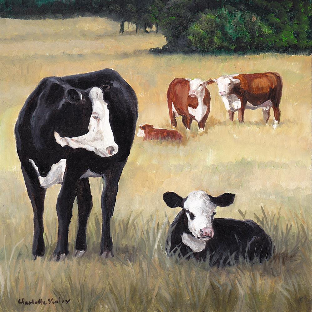 """Spring Calfs"" original fine art by Charlotte Yealey"