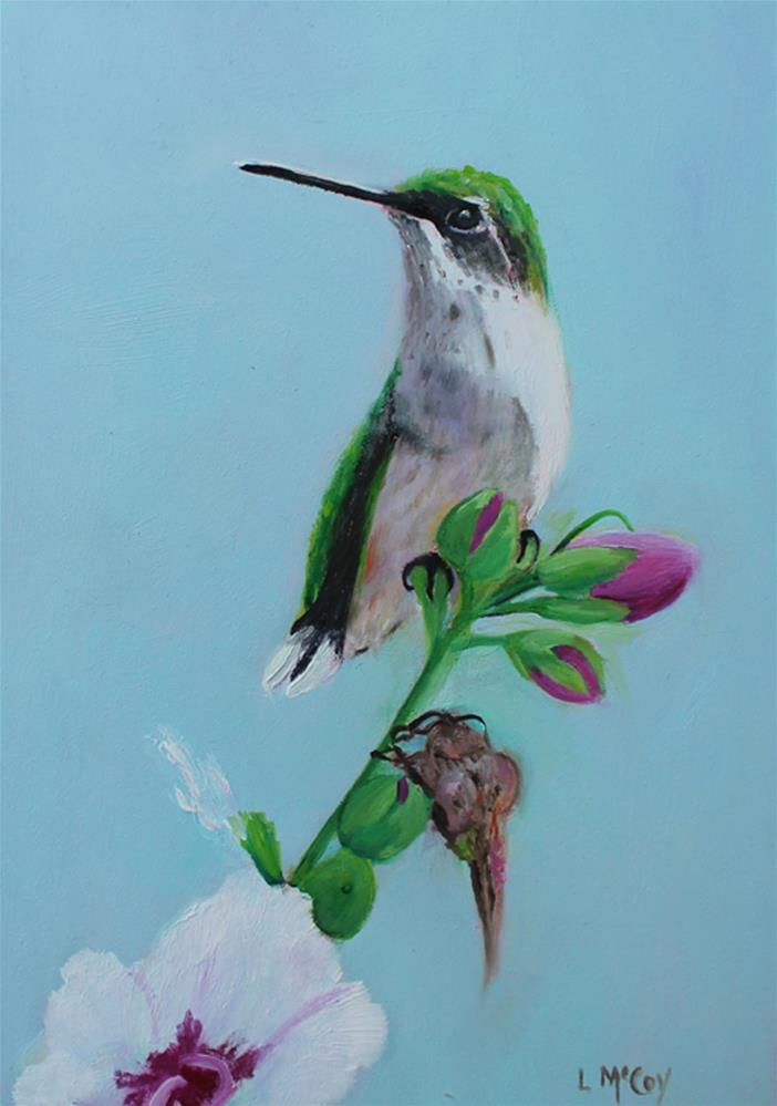 """Hummingbird, on Rose of Sharon Buds"" original fine art by Linda McCoy"