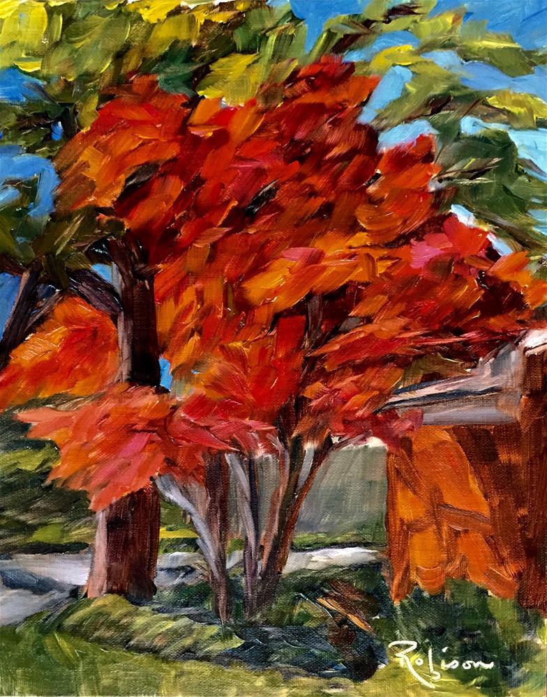 """Splendid Japanese Maple"" original fine art by Renee Robison"