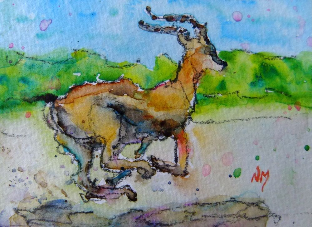 """off and running"" original fine art by Nora MacPhail"