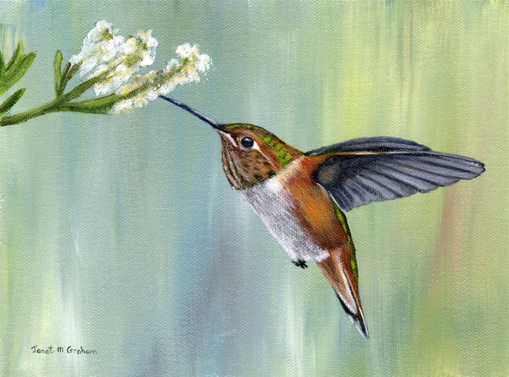 """Hummingbird"" original fine art by Janet Graham"