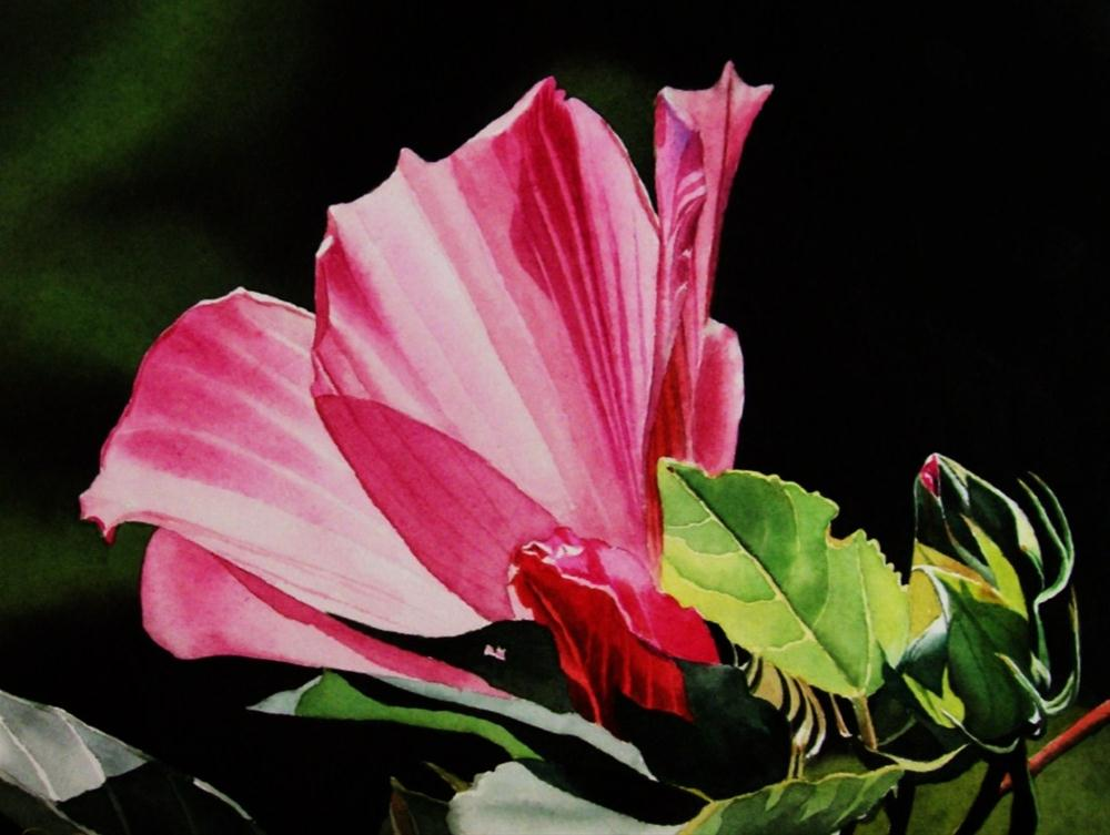 """""""Pink Hybiscus with Buds"""" original fine art by Jacqueline Gnott, TWSA, WHS"""
