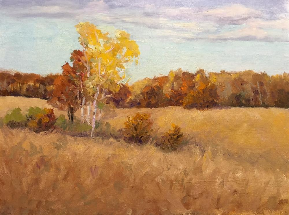 """""""Amber Afternoon"""" original fine art by Judith Anderson"""