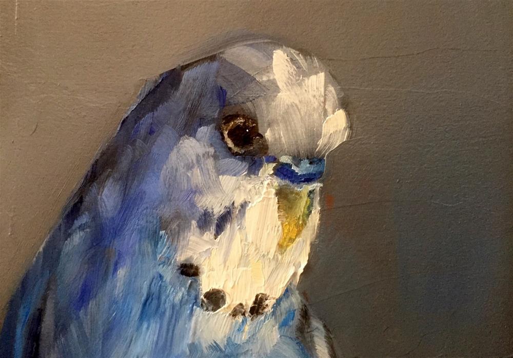 """Budgie"" original fine art by Gary Bruton"