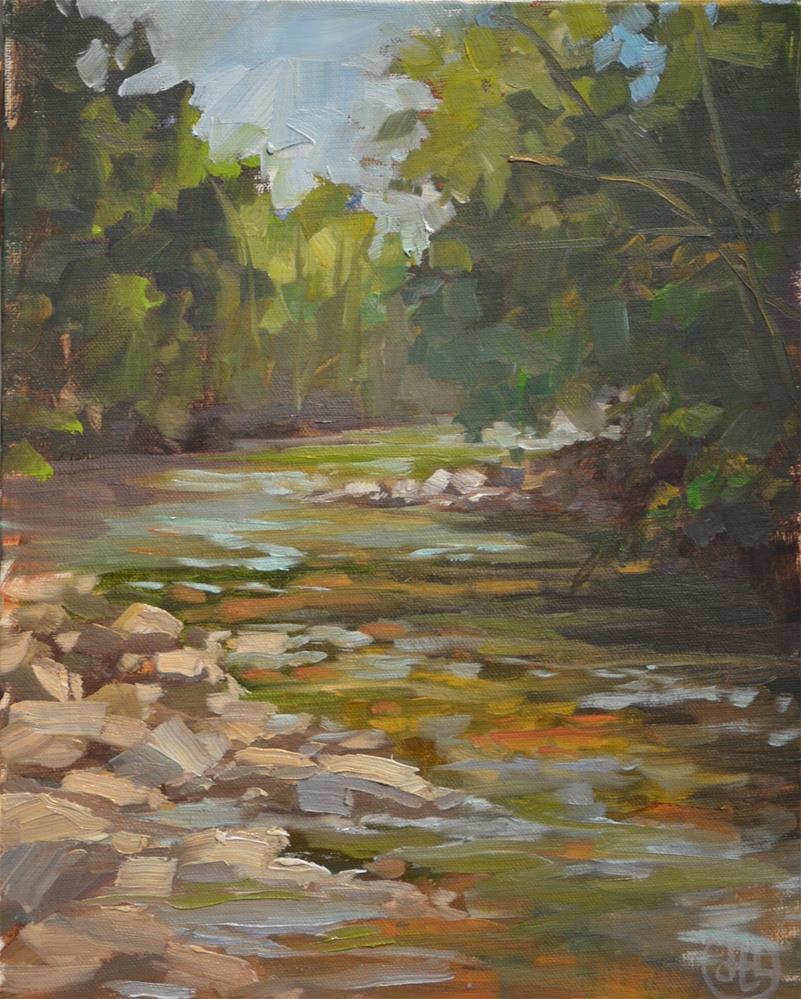 """""""mountain stream"""" original fine art by Dottie  T  Leatherwood"""