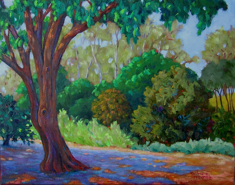 """""""Sun and Shade"""" original fine art by Patricia Musgrave"""