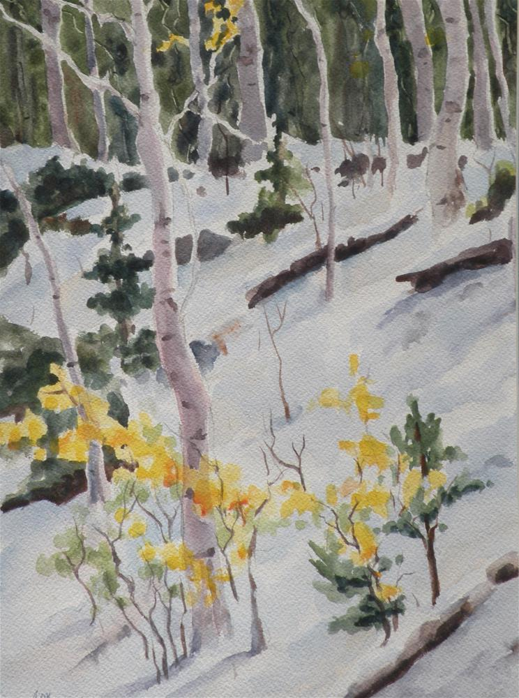 """""""Mountain Aspen"""" original fine art by Alice O'Leary"""