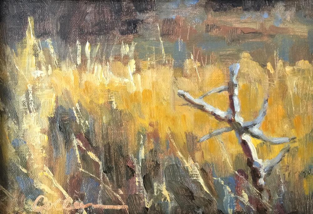 """""""Marsh Still Life"""" original fine art by Colleen Parker"""
