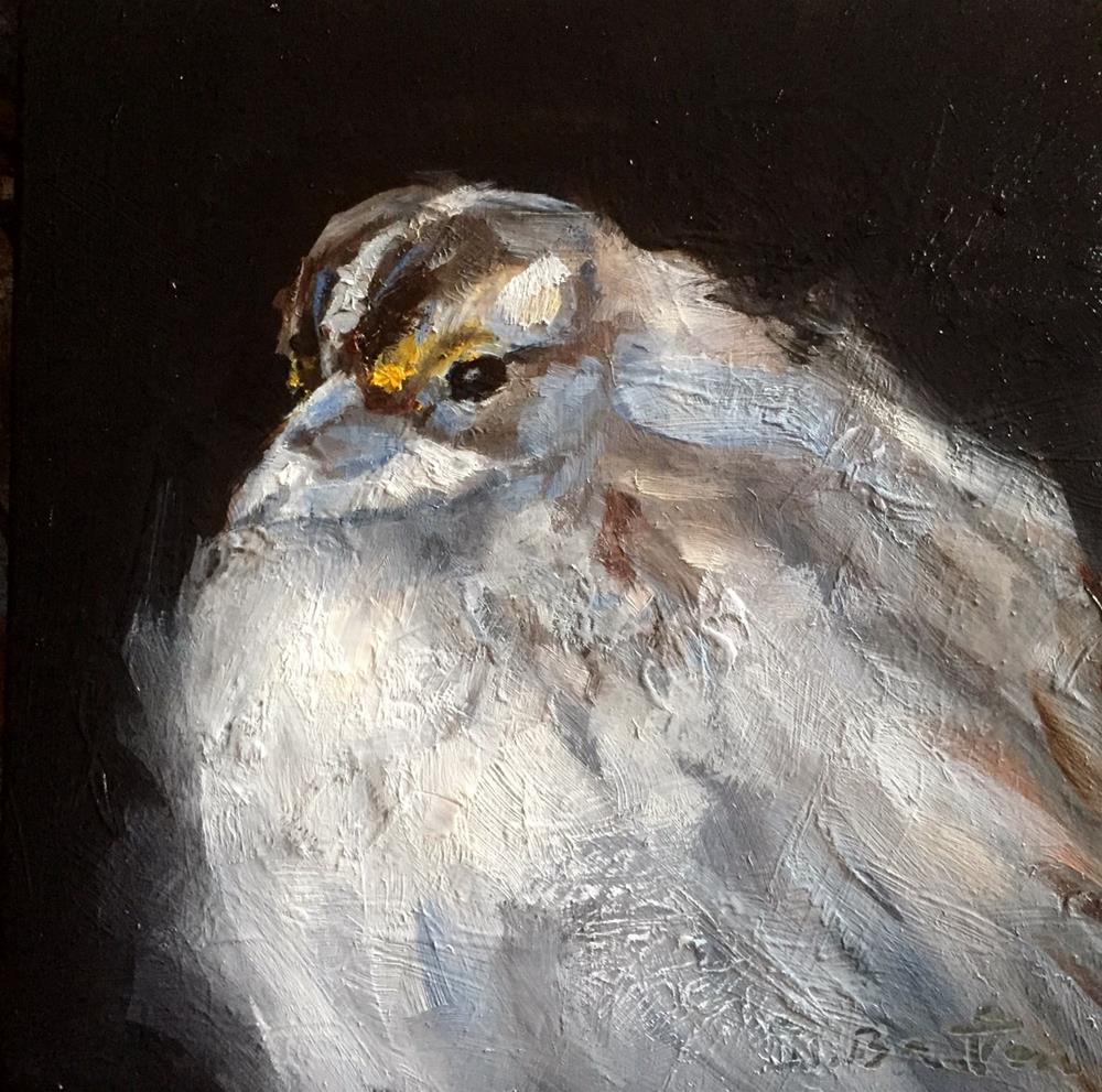 """White Throated Sparrow"" original fine art by Gary Bruton"