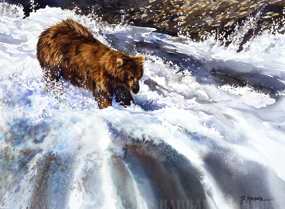 """Kodiak Splash"" original fine art by Barbara Harmon"