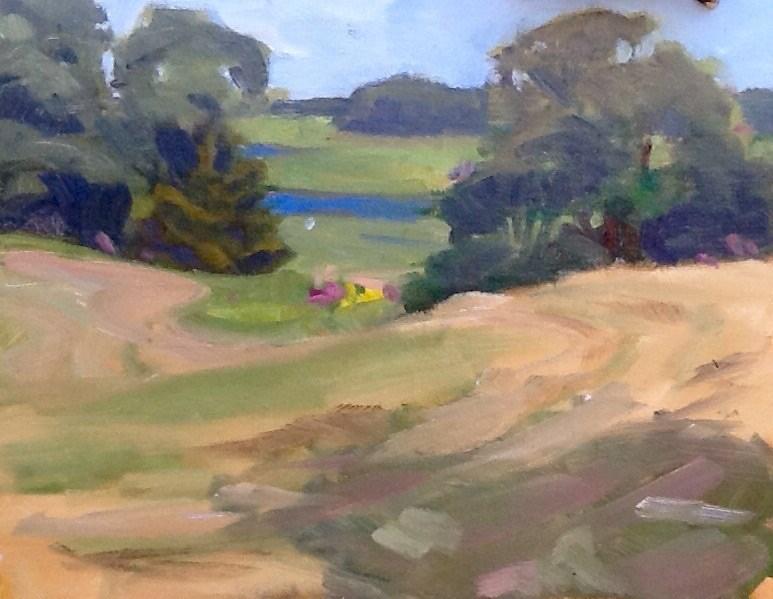 """""""Freshly Mowed"""" original fine art by Elizabeth Bish"""