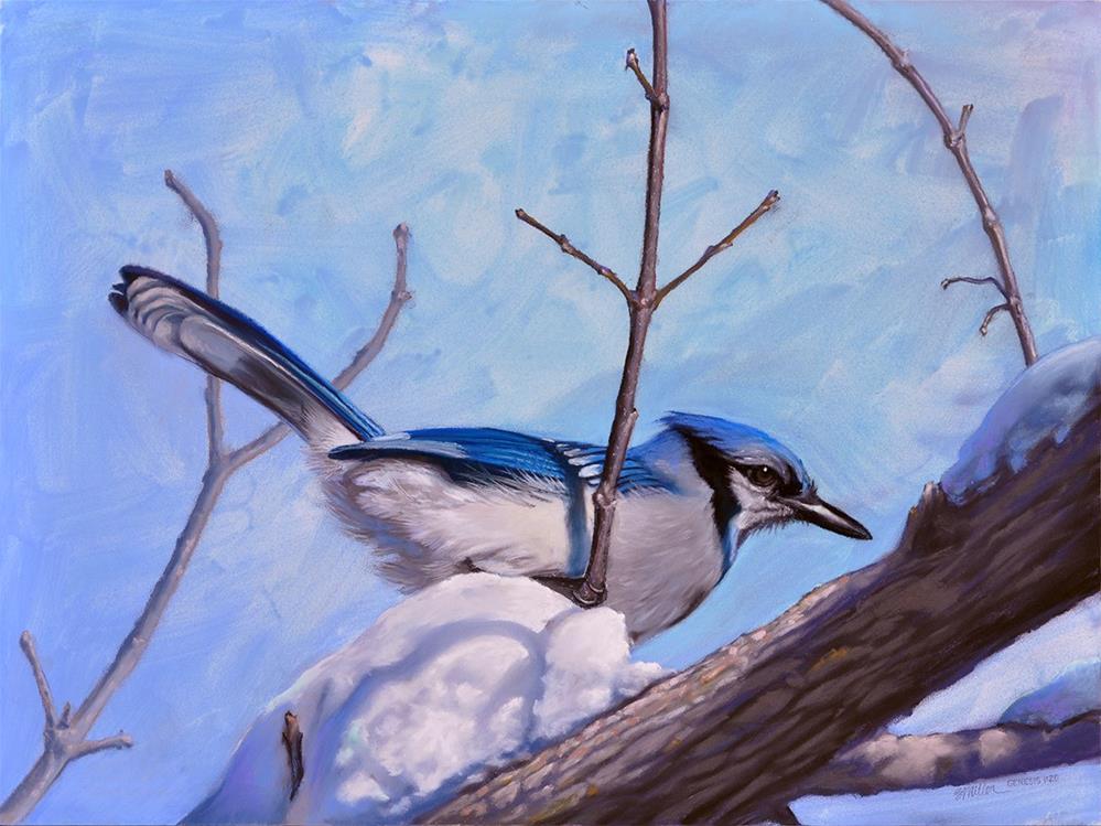 """Winter Blues"" original fine art by Steve Miller"