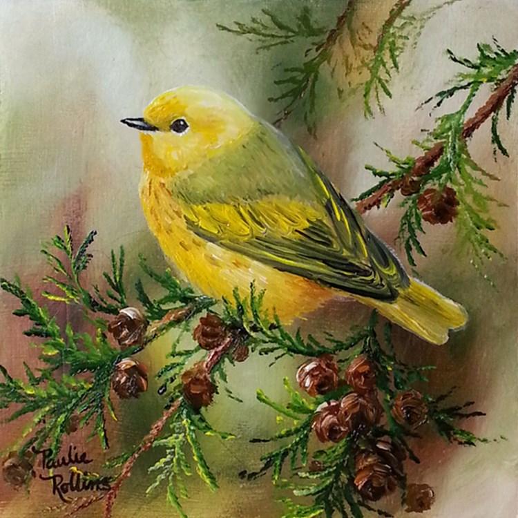 """Sun in the Cedars"" original fine art by Paulie Rollins"