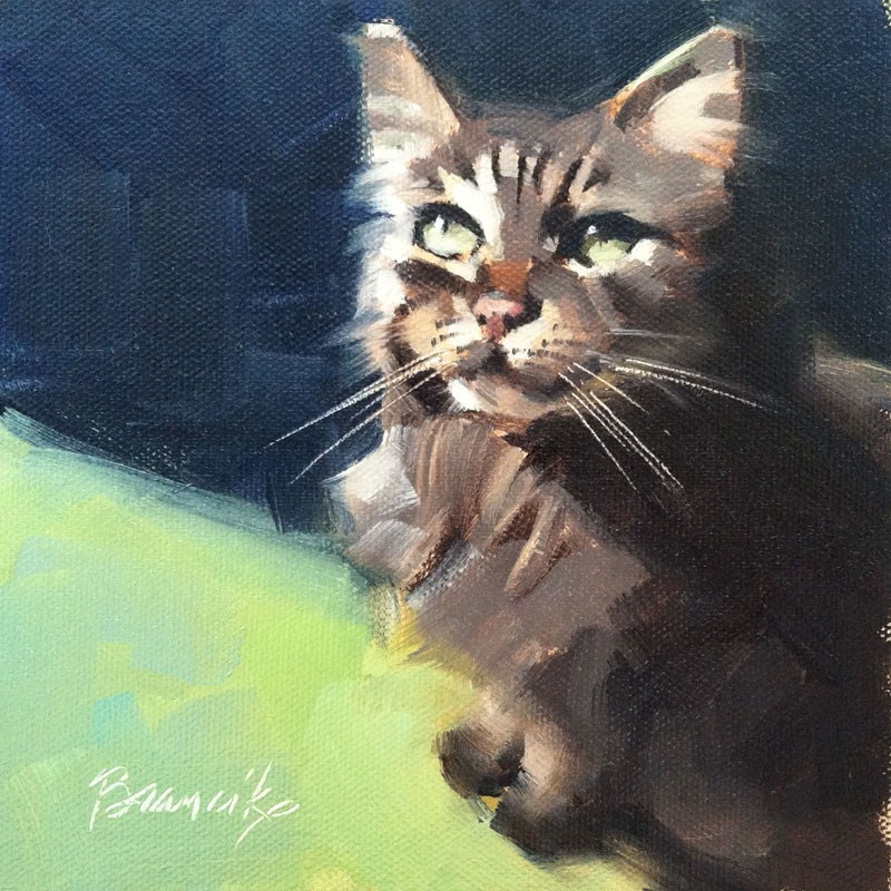 """Maine Coon 2"" original fine art by Candace Brancik"