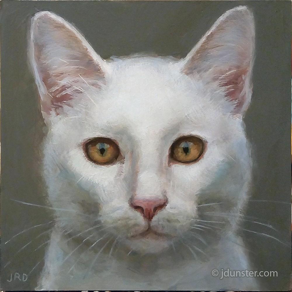 """""""White Kitty"""" original fine art by J. Dunster"""