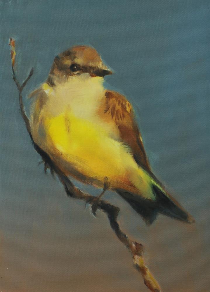 """""""Kingbird at Sunset (framed)"""" original fine art by Pamela Poll"""